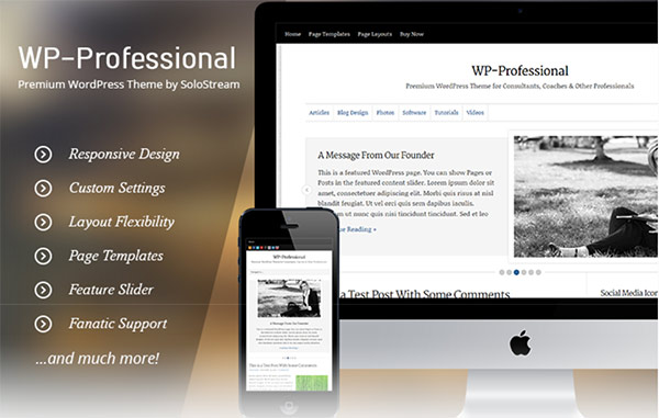 WP-Professional Discount Code